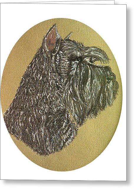 Greeting Card featuring the drawing Schnauzer by Terri Mills