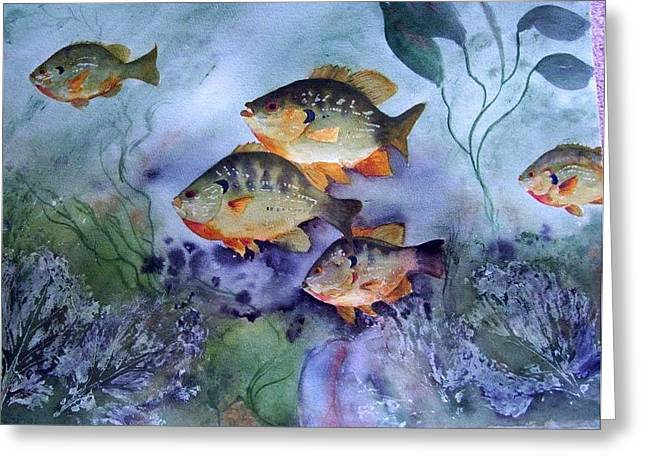 School's Out - Bluegills Greeting Card by Audrey Bunchkowski