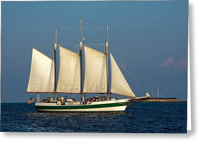 Schooner By Fort Sumter Greeting Card by Sally Weigand
