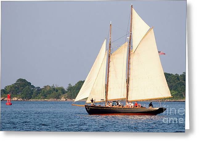 Schooner Cruise, Casco Bay, South Portland, Maine  -86696 Greeting Card