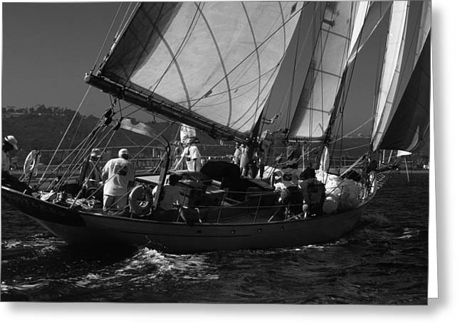Schooner Dauntless Greeting Card