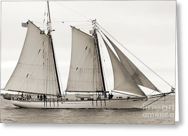 Schooner Harvey Gamage Of Islesboro Maine Greeting Card by Dustin K Ryan
