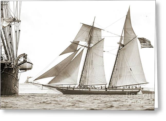 Schooner Lynx Full Sail Greeting Card