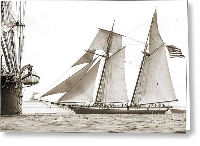 Schooner Lynx Full Sail Greeting Card