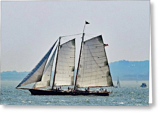 Schooner On New York Harbor No. 3 Greeting Card by Sandy Taylor