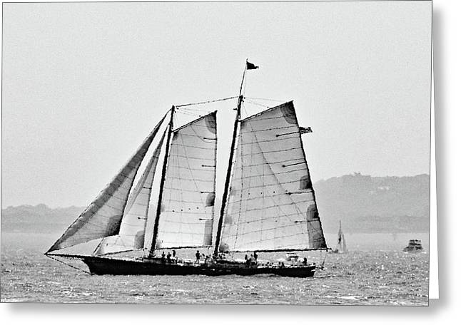 Schooner On New York Harbor No. 3-1 Greeting Card by Sandy Taylor