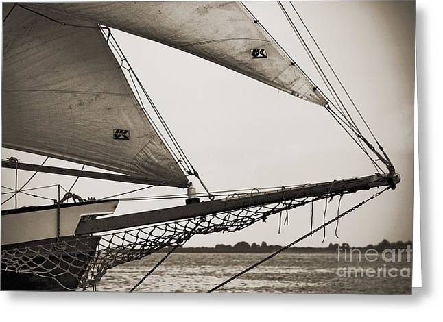 Schooner Pride Tall Ship Charleston Sc Greeting Card