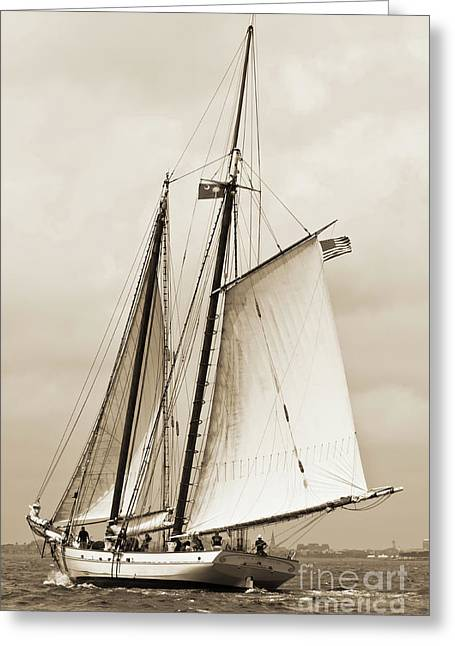 Schooner Sailboat Spirit Of South Carolina Sailing Greeting Card by Dustin K Ryan