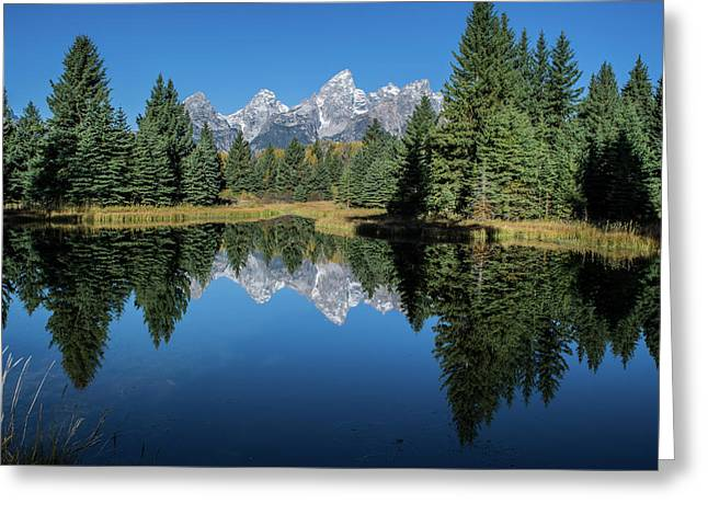 Schwabacher Landing Greeting Card by Mary Hone