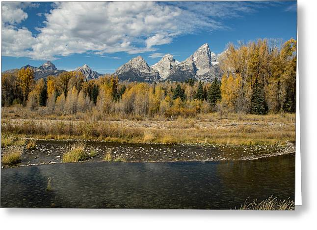 Schwabacher's Landing Greeting Card by Andrew Wells