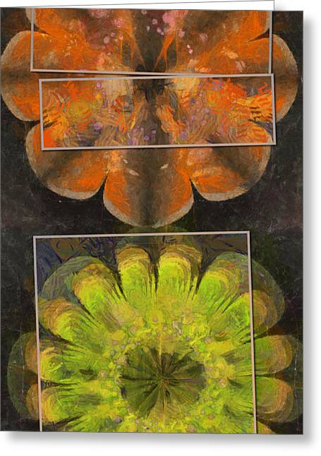 Scoparin Bald Flower  Id 16164-203427-54971 Greeting Card by S Lurk