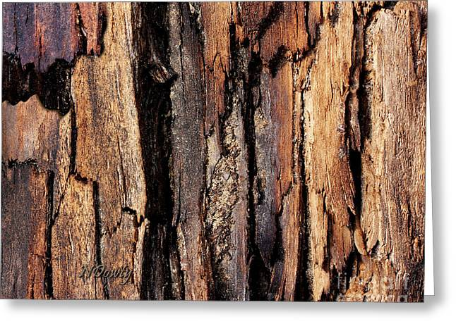Scorched Timber Greeting Card