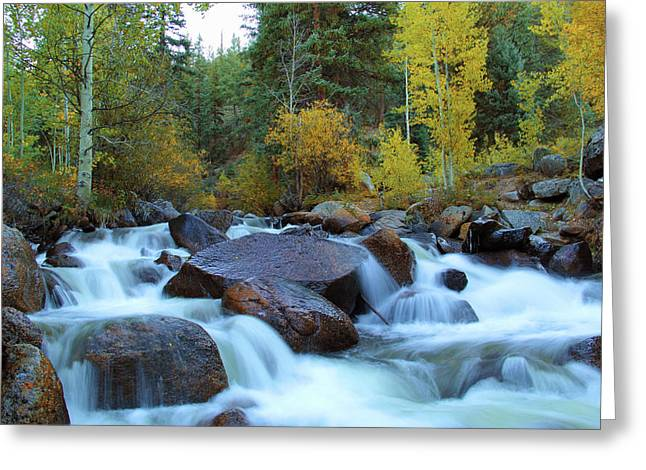 Greeting Card featuring the photograph Scott Gomer Creek At Guanella Pass by Marie Leslie