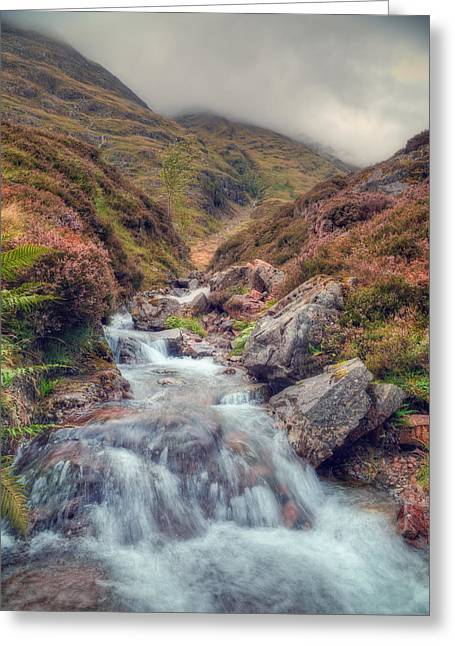 Scottish Mountain Stream Greeting Card by Ray Devlin
