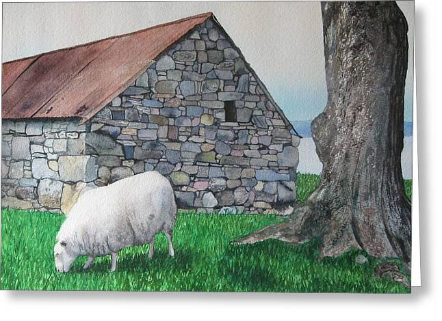 Scottish Sheep Greeting Card by Sharon Farber
