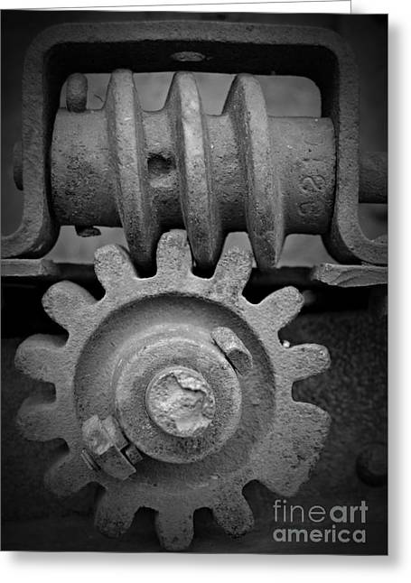 Screw And Gear Bw Greeting Card