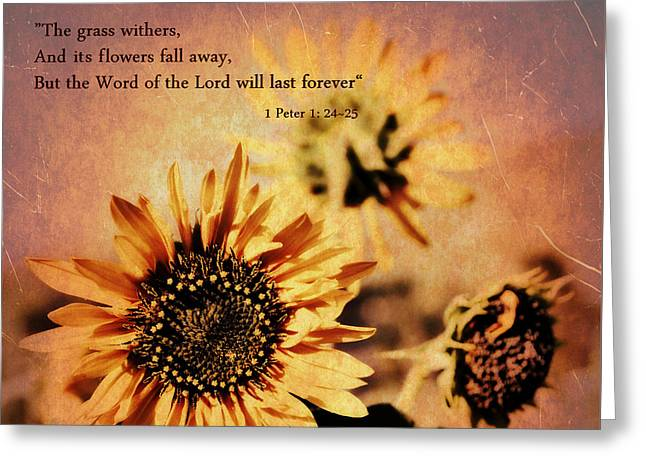 Scripture - 1 Peter One 24-25 Greeting Card by Glenn McCarthy Art and Photography