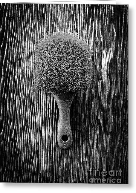 Scrub Brush Up Bw Greeting Card