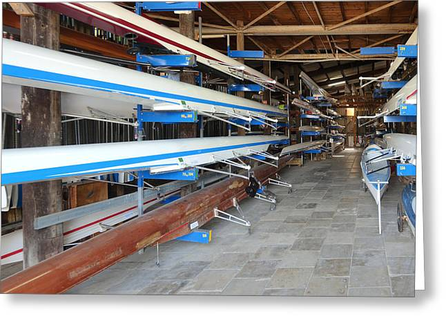 Sculling Shells On Racks Greeting Card