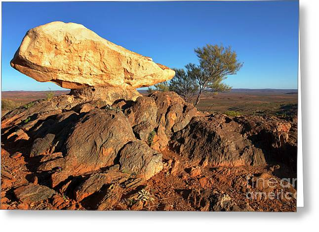 Greeting Card featuring the photograph Sculpture Park Broken Hill by Bill Robinson