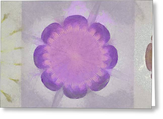 Scutelliform Au Naturel Flower  Id 16165-154936-44160 Greeting Card