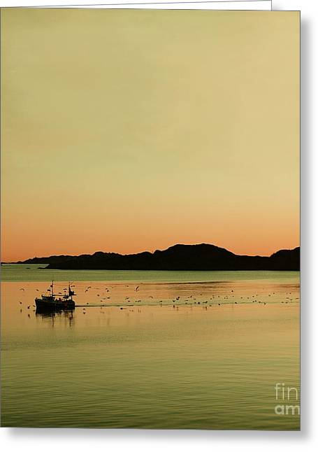 Norwegian Sunset Greeting Cards - Sea after sunset Greeting Card by Sonya Kanelstrand