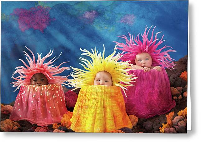 Sea Anemones  Greeting Card by Anne Geddes