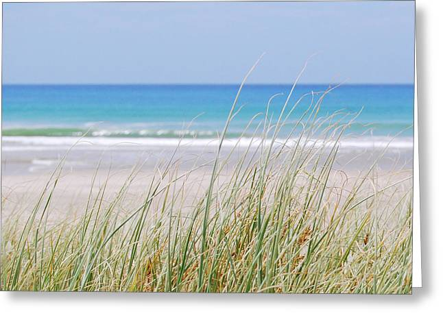 Sea Breeze Greeting Card