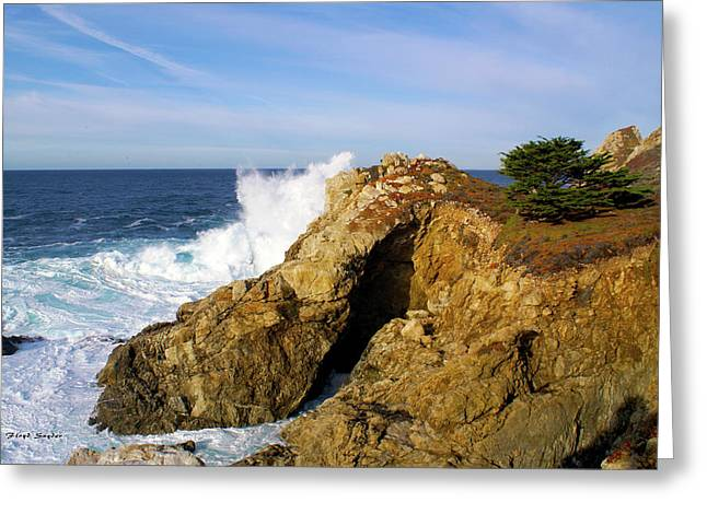 Greeting Card featuring the photograph Sea Cave Big Sur by Floyd Snyder