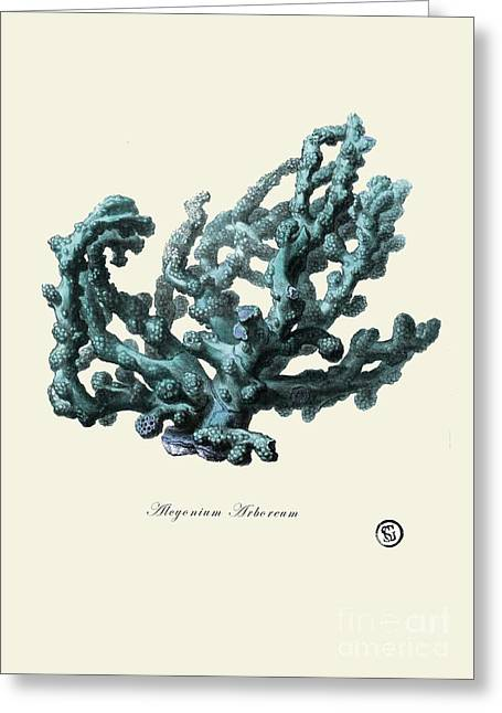 Sea Coral Greeting Card by Patruschka Hetterschij