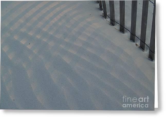 Sea Fence At Hunting Island Greeting Card by Anna Lisa Yoder