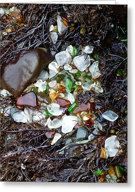Sea Glass Nest Greeting Card