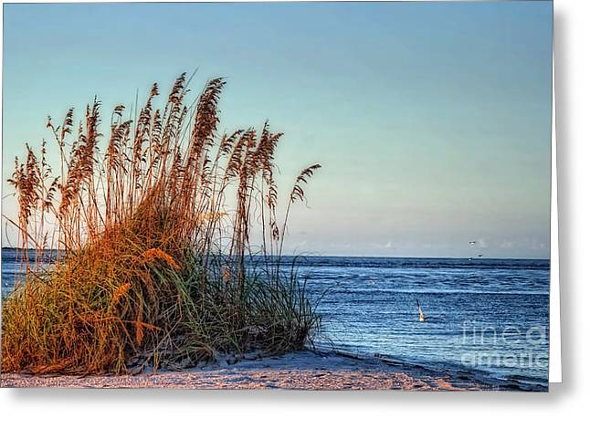 Sea Grass View Greeting Card