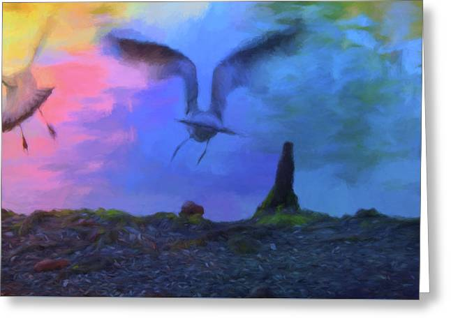 Greeting Card featuring the photograph Sea Gull Abstract by Jan Amiss Photography
