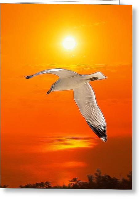 Greeting Card featuring the photograph Sea Gull by Athala Carole Bruckner