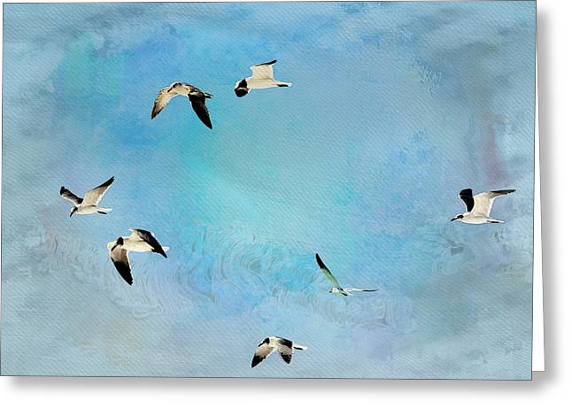 Greeting Card featuring the photograph Sea Gulls In Flight by Athala Carole Bruckner