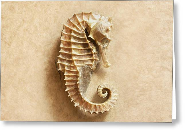 Sea Horse 2 Greeting Card by Jon Neidert