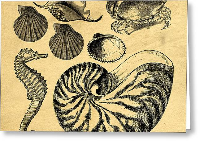 Sea Life Vintage Illustrations Greeting Card by Edward Fielding