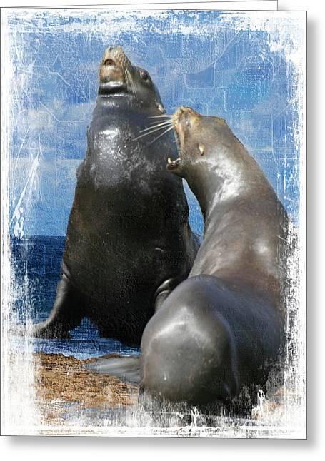 Sea Lion Conversation Greeting Card