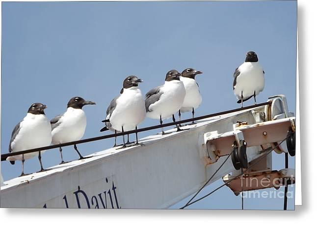 Sea Mates Greeting Card by Dawn Gilbert Rikard