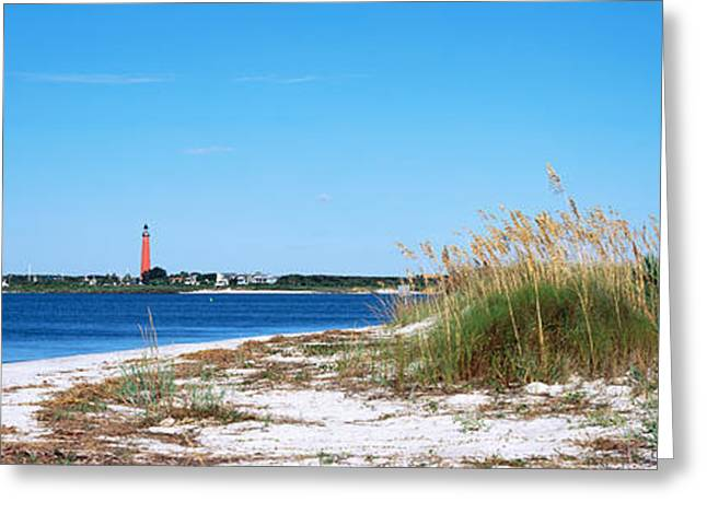Sea Oat Grass On Beach With Ponce De Greeting Card by Panoramic Images