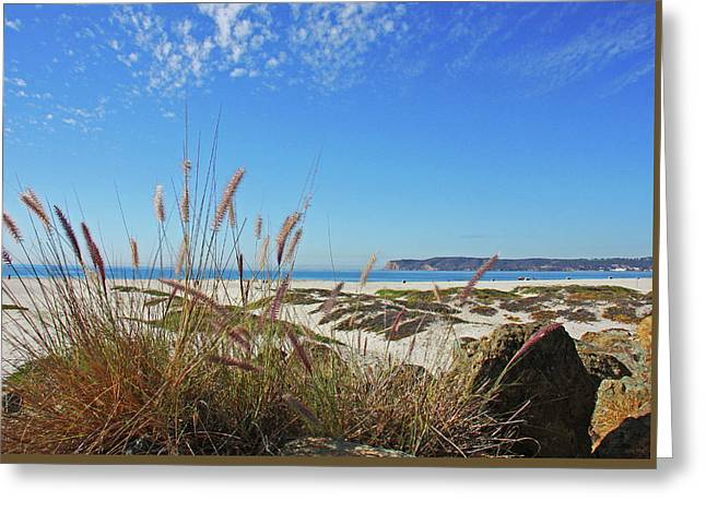 Sea Oats And Dunes Greeting Card