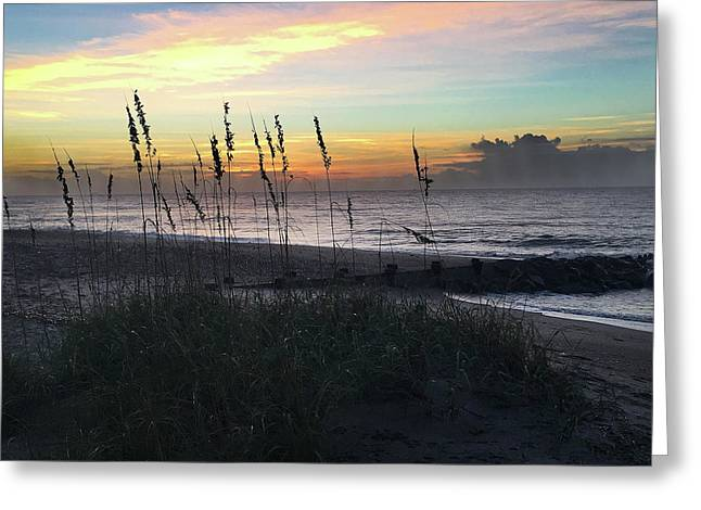 Sea Oats And Sunlight Greeting Card