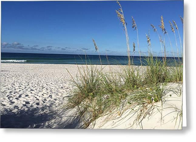 Sea Oats At The Beach Greeting Card