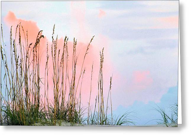 Sea Oats Greeting Card by Kristin Elmquist