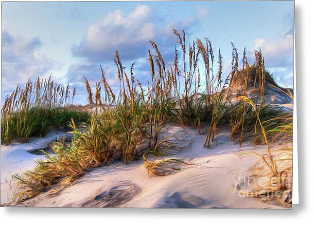 Sea Oats On Outer Banks Sand Dunes Ap Greeting Card