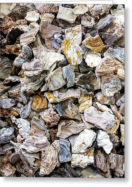 Sea Of Rocks Greeting Card by David Millenheft