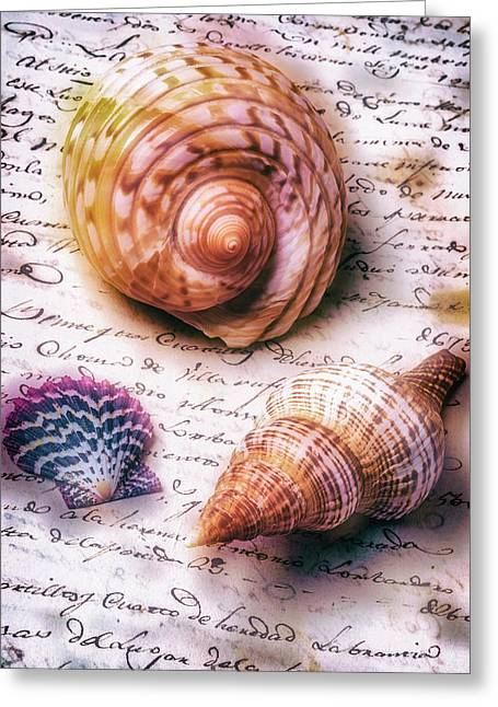 Sea Shells On Old Letter Greeting Card by Garry Gay