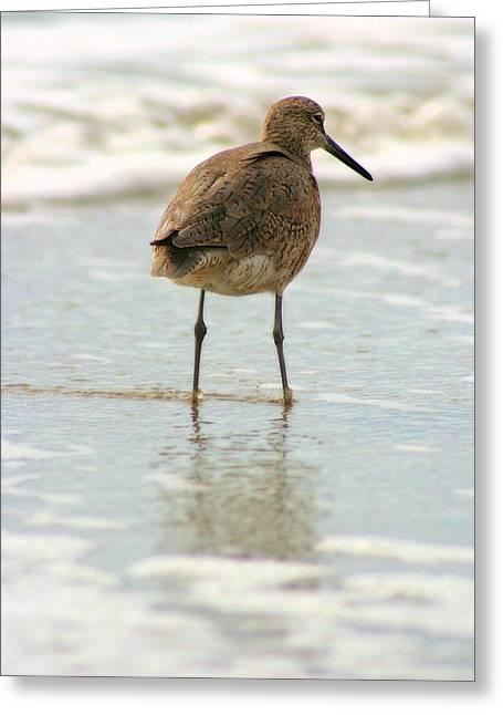 Sea Shore Stroller Greeting Card