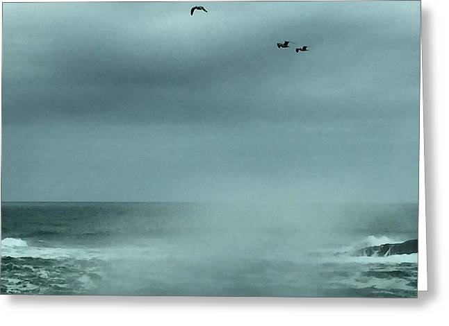 Sea Spray Greeting Card by Christine Lathrop